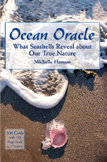 Ocean Oracle Kit